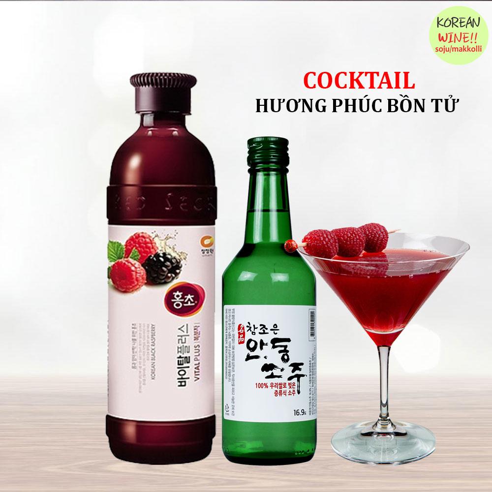 Cocktail Phu Bon Tu